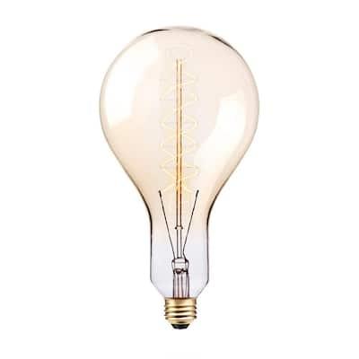 100-Watt PS42 Oversized Vintage Incandescent Bulb