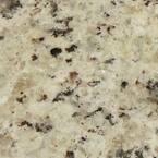 4 in. x 4 in. Giallo Ornamental Granite Sample