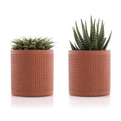 2.5 in. Assorted Succulent Set in Orange Dot Pot (2-Pack)