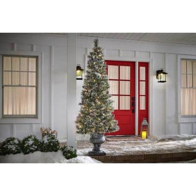 6.5 ft Sparkling Amelia Pine Potted Pre-Lit Artificial Christmas Tree with 200 White Mini Lights