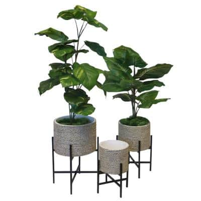 Plant Stand Indoor Adjustable Metal Plant Stand with Modern Design, Potted Plant Holder, Large, Medium, Small (Set of 3)