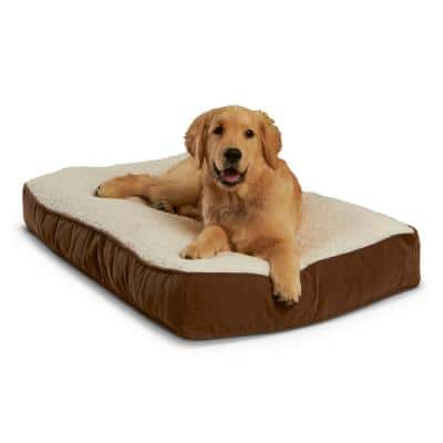 Buster Small Latte Sherpa Dog Bed