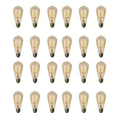 60-Watt ST19 Dimmable Incandescent Amber Glass Vintage Edison Light Bulb with Cage Filament Soft White (24-Pack)