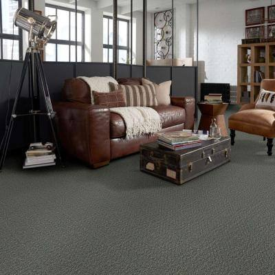 Isla Vista - Color Fieldstone 12 ft. Carpet