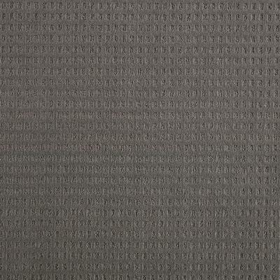 Canter- Color Elemental Texture Gray Carpet