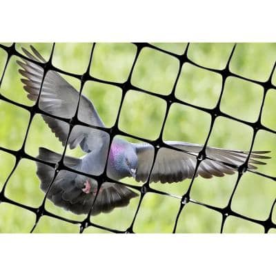 100 ft. x 14 ft. Structural Bird Netting