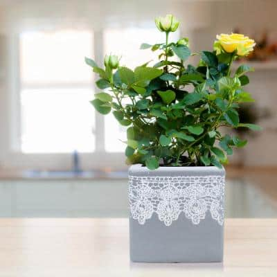 7.5 in. Square Composite Crochet Cube Planter in Grey