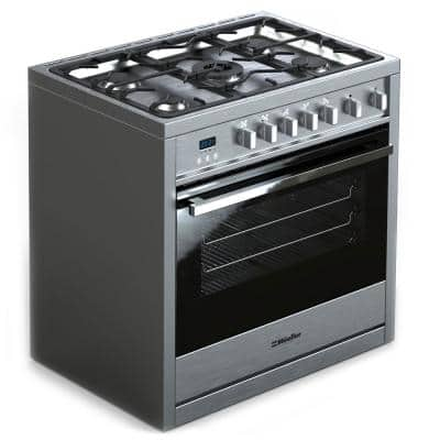 36 in. 3.8 cu. ft. Professional Freestanding Gas Range with 5 Burners, Convection Oven in Stainless Steel