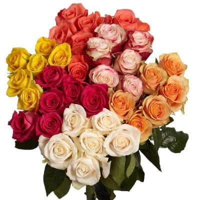 100 Stems of Assorted Roses - 4 Different Colors
