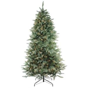 9 ft. Pre-Lit Washington Frasier Full Artificial Christmas Tree - Clear Lights