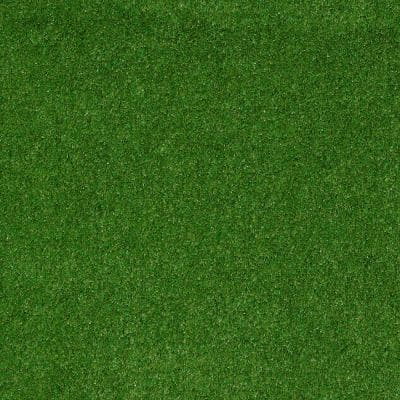 8 in. x 8 in. Texture Carpet Sample - Toulon - Color Meadow