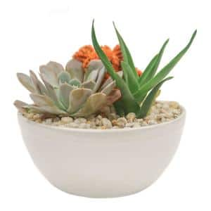 Orange Desert Gems Garden in 6 in. Gloss Ceramic Bowl