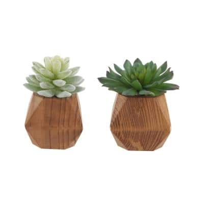 4.5 in. Set of 2 Faux Succulent in Wood Pot