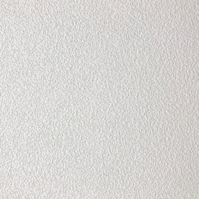 White 2 ft. x 2 ft. Square Edge Fiberglass Ceiling Tile (Case of 12)