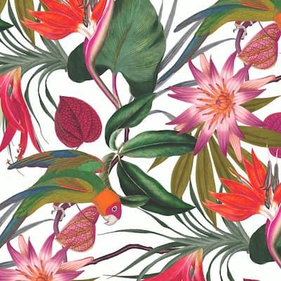 Parrot White Wallpaper Sample