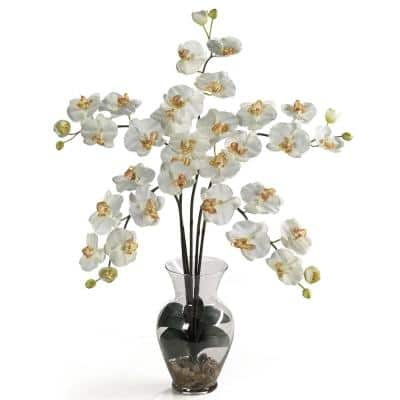 31 in. Phalaenopsis Liquid Illusion Silk Flower Arrangement in Cream