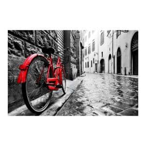47 in. x 32 in. ''The Red Bike'' Tempered Glass Wall Art
