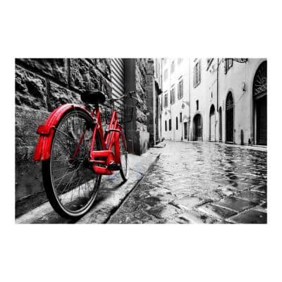 """47 in. x 32 in. """"The Red Bike"""" Tempered Glass Wall Art"""