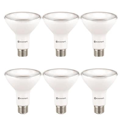 75- -Watt Equivalent PAR30 Dimmable Energy Star Flood LED Light Bulb Daylight (6-Pack)