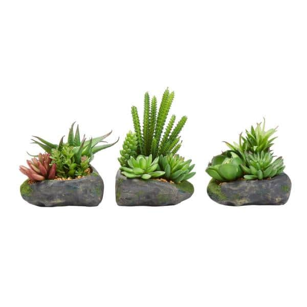 Pure Garden Artificial Succulent Plant Arrangements In Assorted Sizes Set Of 3 Hw1500157 The Home Depot