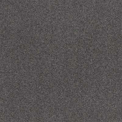 Wholehearted II - Color Skyline 12 ft. Twist Carpet