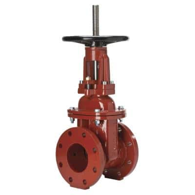 2-1/2 in. Iron Gate Valve with Flanged End Connections
