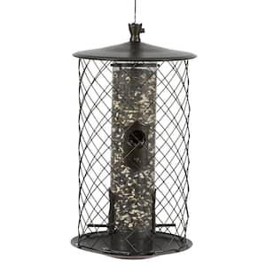 The Preserve Squirrel Proof Bird Feeder - 3 lb. Capacity