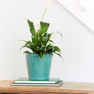 Foliaro 11.25 in. x 11.25 in. Green High-Density Resin Planter