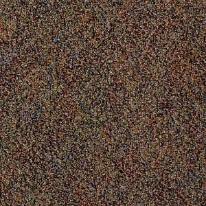 Developer Rich Pattern 24 in. x 24 in. Modular Carpet Tile Kit (18 Tiles/Case)