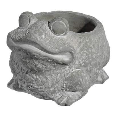 Large Natural Cement Frog Planter