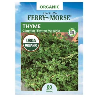 Thyme Organic Seed
