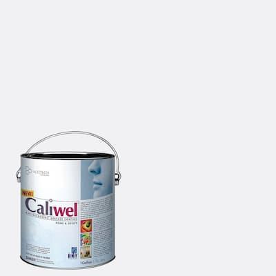 1 gal. Gray Latex Interior Paint