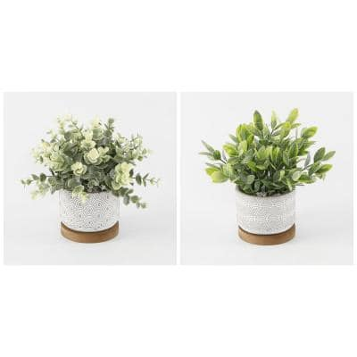 Artificial Eucalyptus and Tea Leaf in 3.75 in. Cement + Wood Base Pot (Set of 2)
