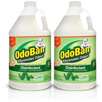 1 Gal. Eucalyptus Disinfectant and Odor Eliminator, Fabric Freshener, Mold Control, Multi-Purpose Concentrate (2-Pack)