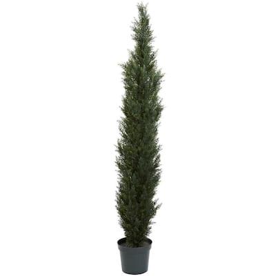 7 ft. Mini Cedar Pine Tree