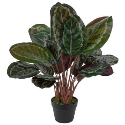 """30"""" Artificial Large Green Leaf Calatheas Potted Plant"""