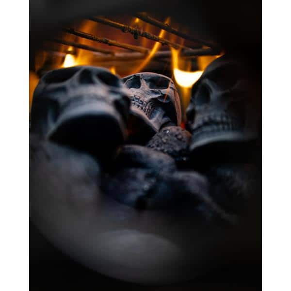 9 Halloween big skull charcoals for barbecue fire pit,… brazier
