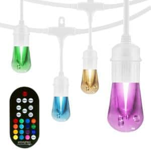 24-Bulb 48 ft. Vintage Seasons  Color Changing Cafe Integrated LED String Lights, White