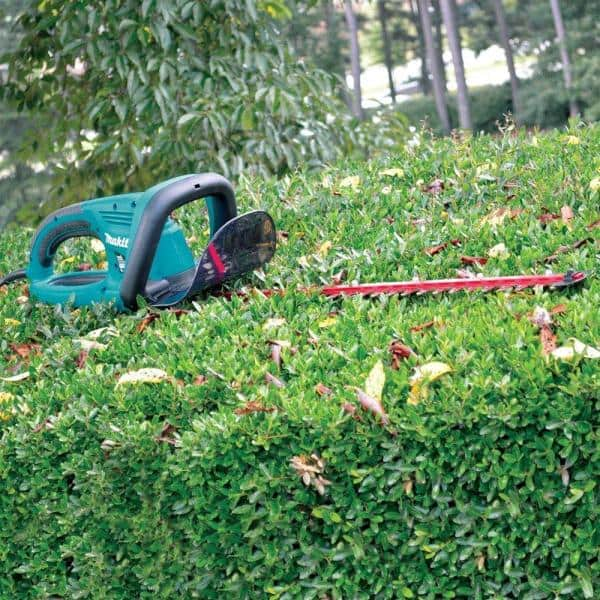 Makita 22 In 4 8 Amp Corded Electric Hedge Trimmer Uh5570 The Home Depot