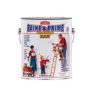 Paint and Prime 1 gal. All in One Elastomeric Interior/Exterior Paint and/or Primer