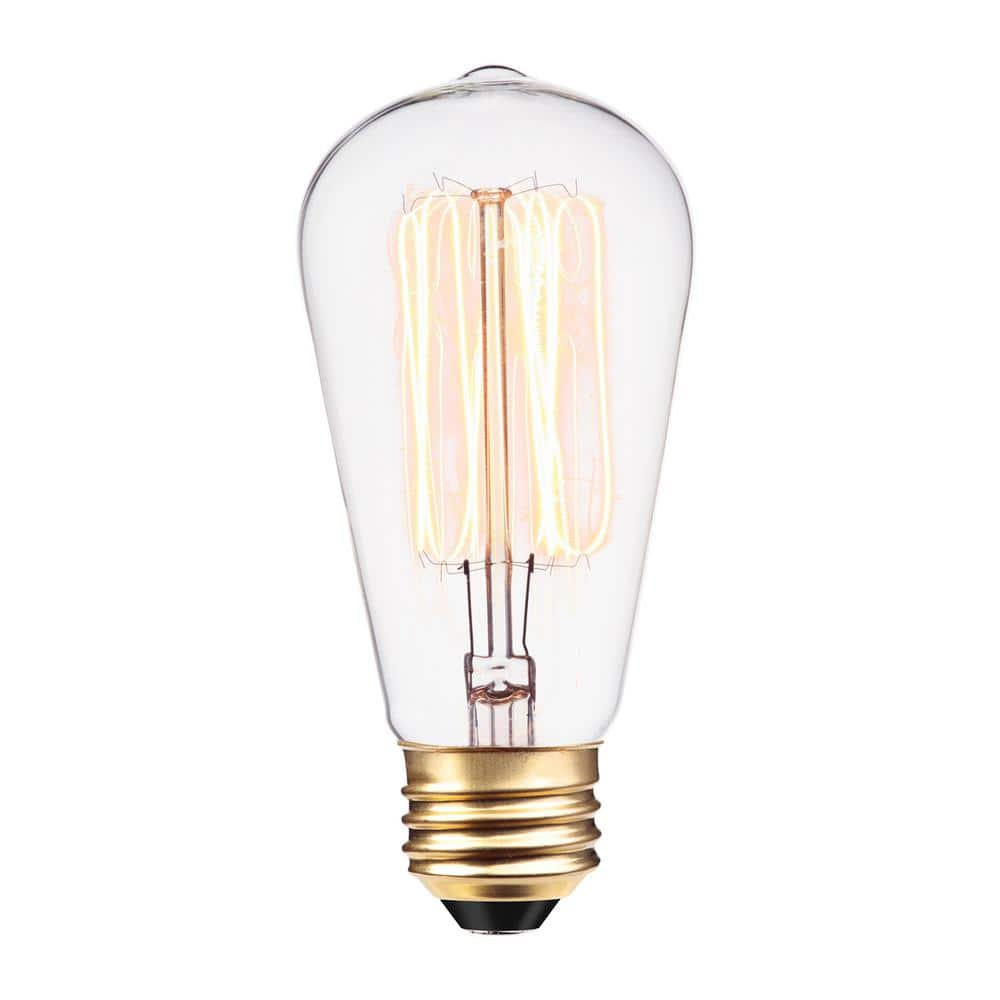 Globe Electric 60-Watt Incandescent S60 Vintage Squirrel Cage Medium Base Light Bulb-01321 - The Home Depot