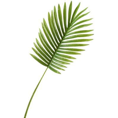 Indoor Small Hawaiian Palm Leaf (Set of 3)