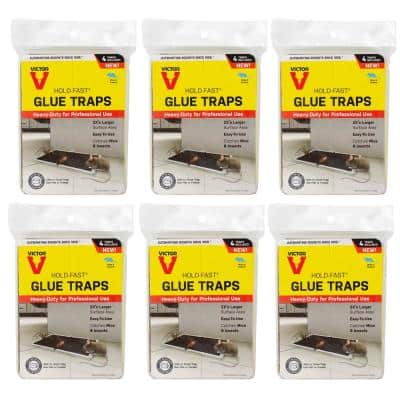 Hold-Fast Mouse Glue Traps (24-Count)