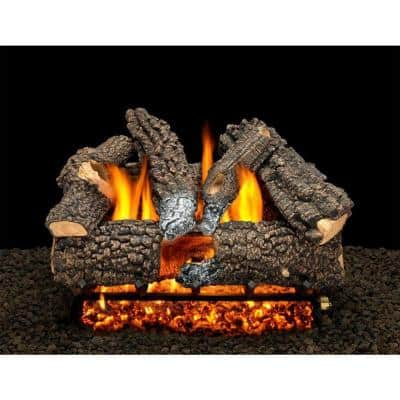 Aspen Whisper 18 in. Vented Propane Gas Fireplace Logs, Complete Set with Pilot Kit and On/Off Variable Height Remote