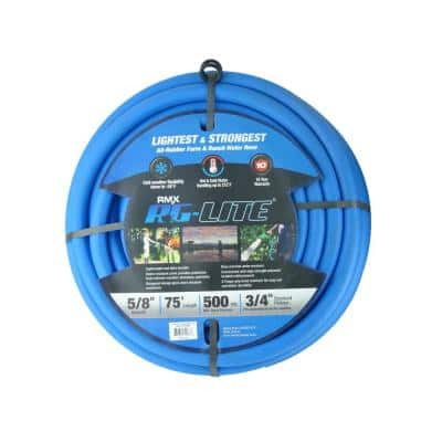 The BlueHose 5/8 in. x 75 ft. Water Hose