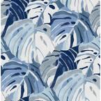 Samara Blue Monstera Leaf Blue Wallpaper Sample
