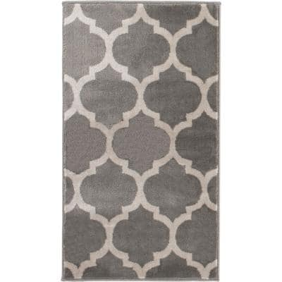Seyward Grey 2 ft. 7 in. x 4 ft. Accent Rug