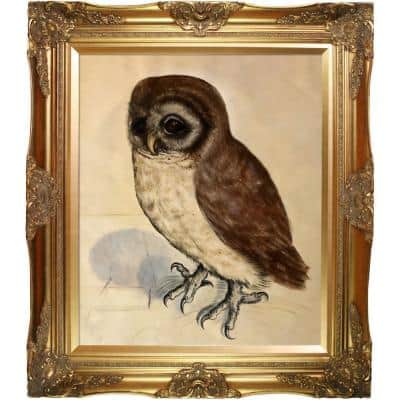 """""""The Little Owl with Victorian Gold Frame """" by Albrecht Durer Oil Painting"""