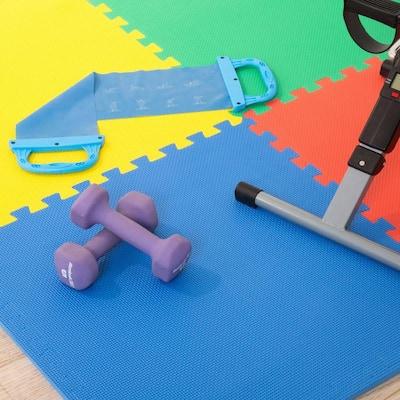 Multi-Color 24 in. x 24 in. x 0.50 in. Interlocking EVA Foam Floor Mat (4-Pack)