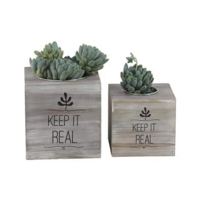 Rustic 5 in. and 7 in. Wood and Iron Cube Planters (Set of 2)
